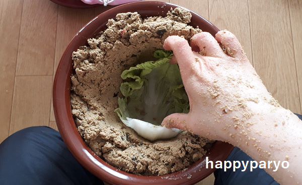 白菜 の 漬け方